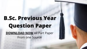 bsc prevous year question paper